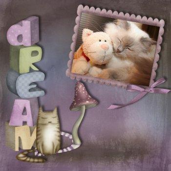 dream1.jpg